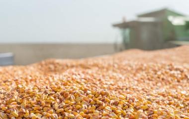 Renewable Enery Directory Ethanol